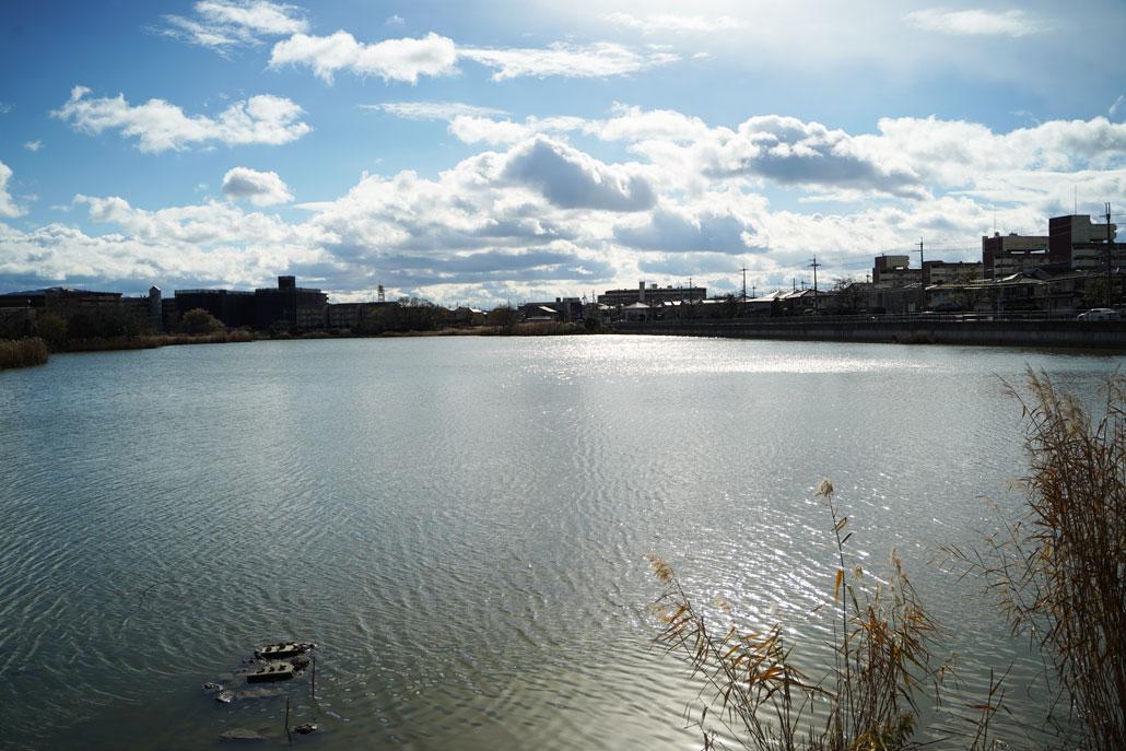 木幡池の写真
