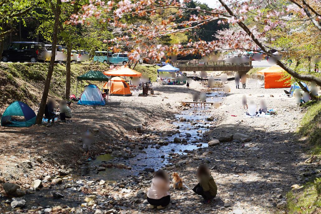 山城町森林公園-山の春フェスタ2