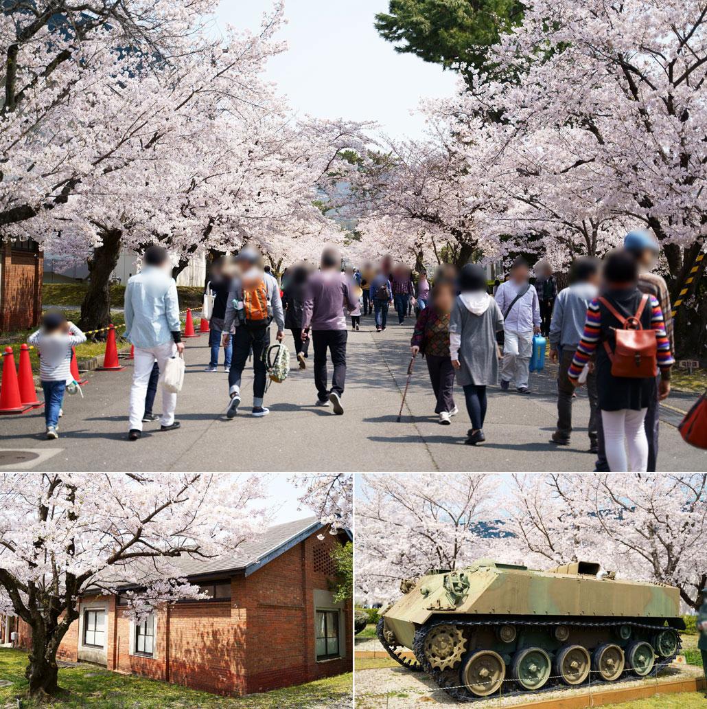 「平成31年 宇治駐屯地桜まつり」の写真1