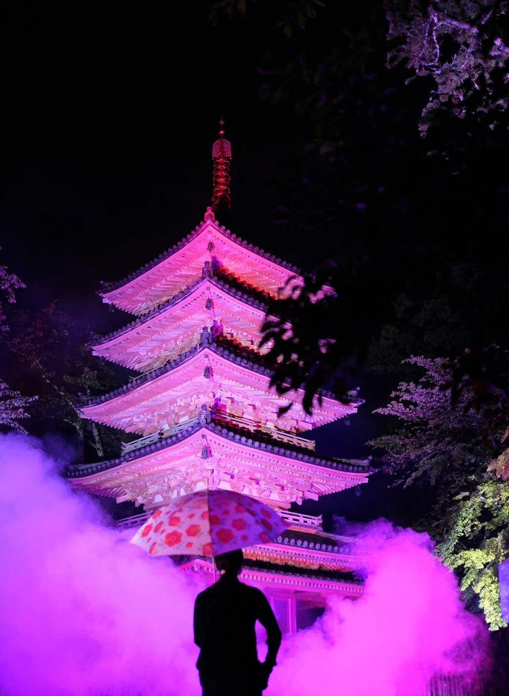 海住山寺ライトアップ