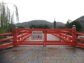 台風19号、立入禁止の画像