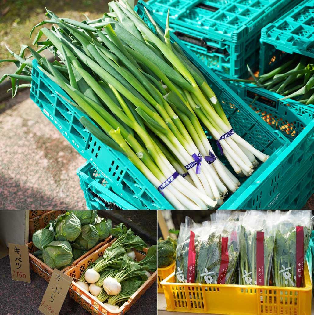 久御山野菜の画像