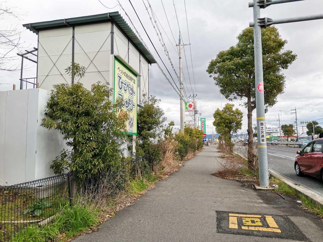 「スーパーセンターイズミヤ 八幡店」国道1号線からの画像