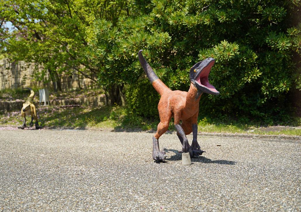 恐竜の画像3
