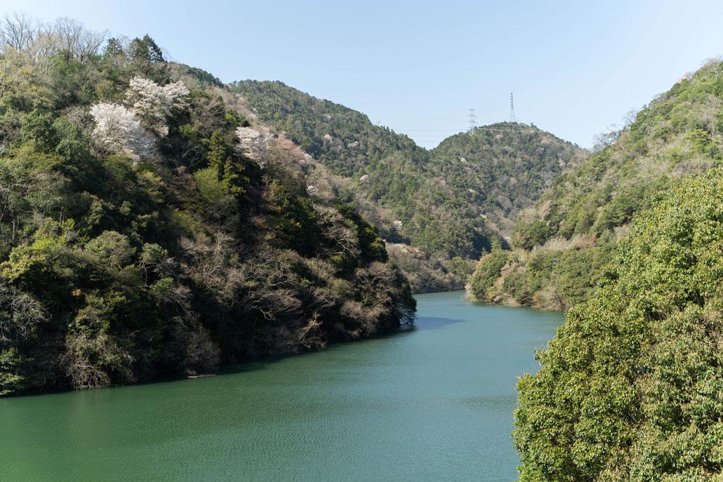 宇治川ライン沿いから見た風景1