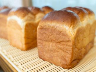 チロルの食パン画像