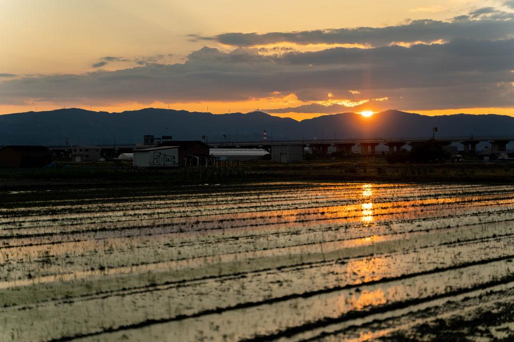 夕日の画像1