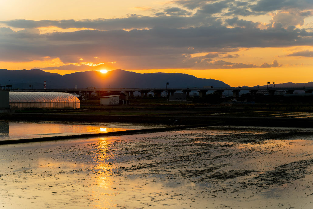 夕日の画像2