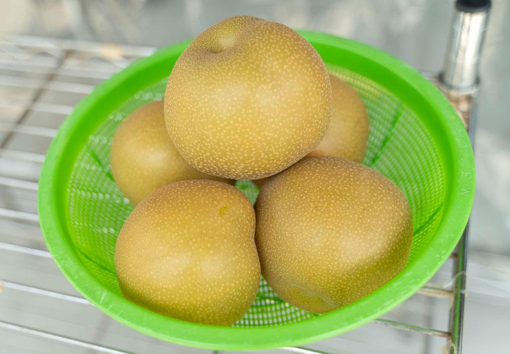 八幡の梨の画像2