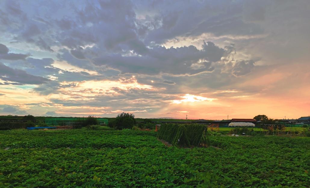 城陽市上津屋エリアからの夕暮れ画像