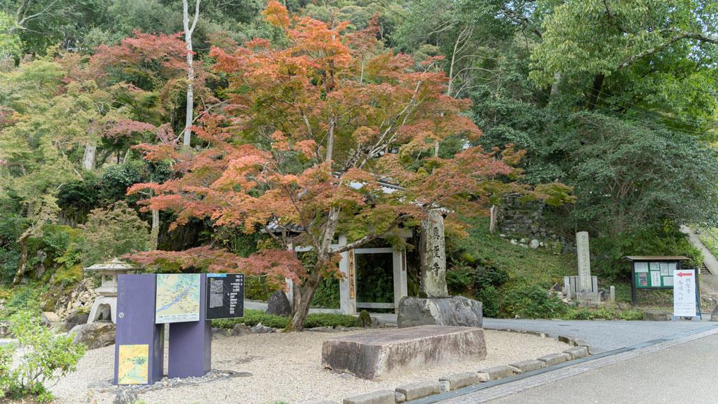 興聖寺の入り口付近の画像