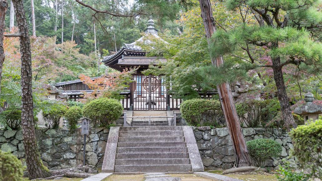 「寿蔵」の画像