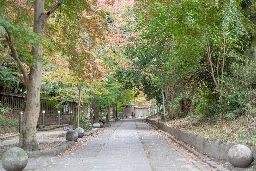 「さわらびの道」の画像1