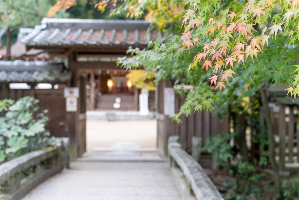 「宇治上神社」の画像2