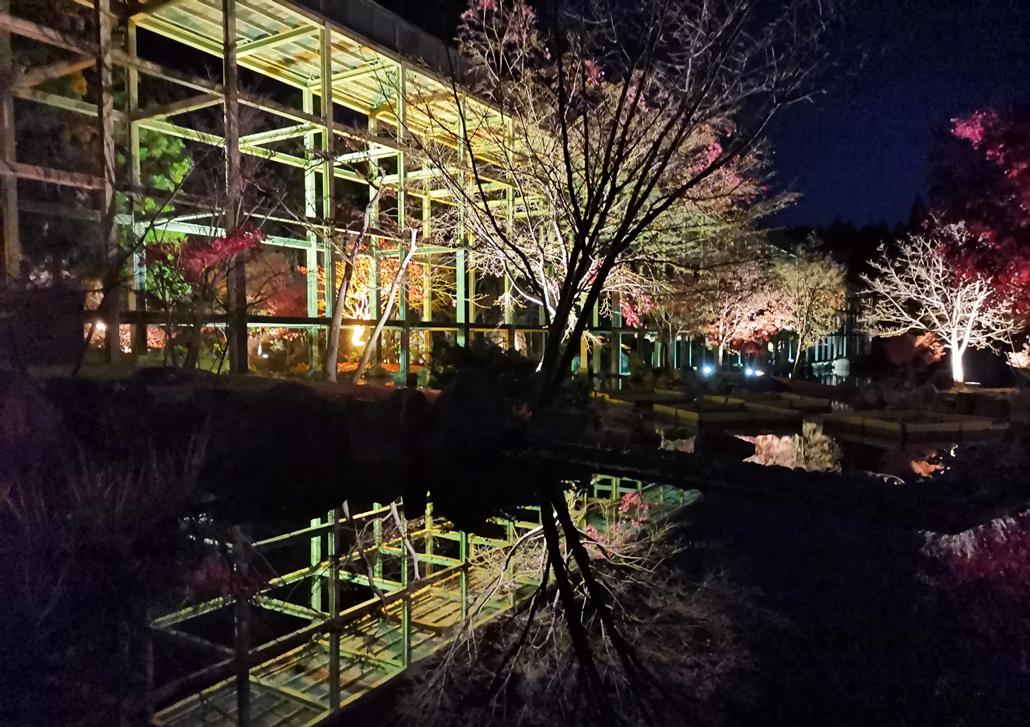 「けいはんな記念公園」紅葉ライトアップの画像1
