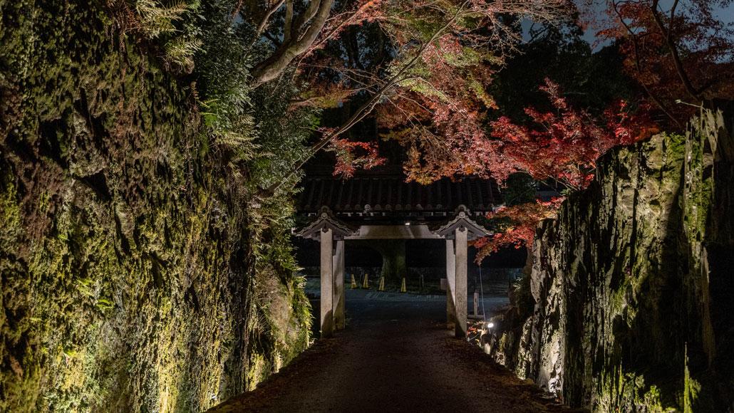 興聖寺の紅葉のライトアップ画像3