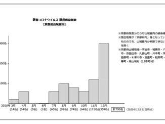 新型コロナ新規感染者2020年12月までのグラフ画像