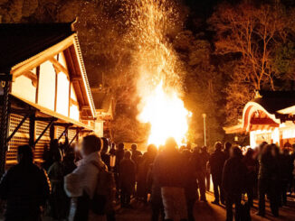 いごもり祭の画像