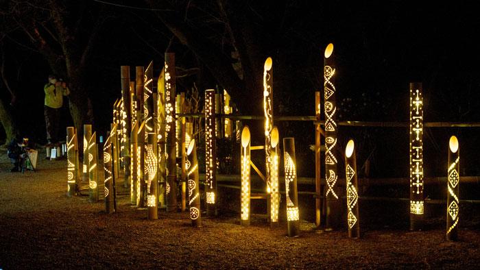 竹灯りの画像