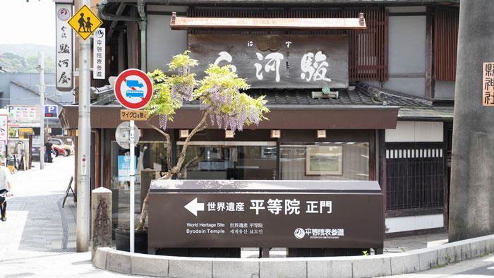 駿河屋さんの藤の花の画像