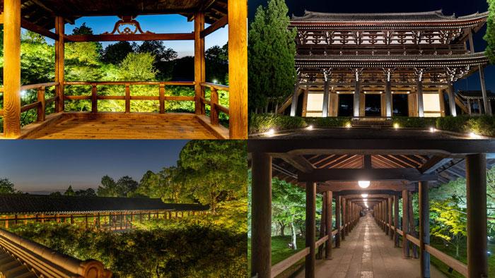 「東福寺ライトアップ」の画像