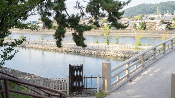 8月31日の宇治川の画像